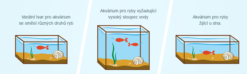 Tvar akvária